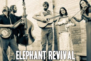 ElephantRevival